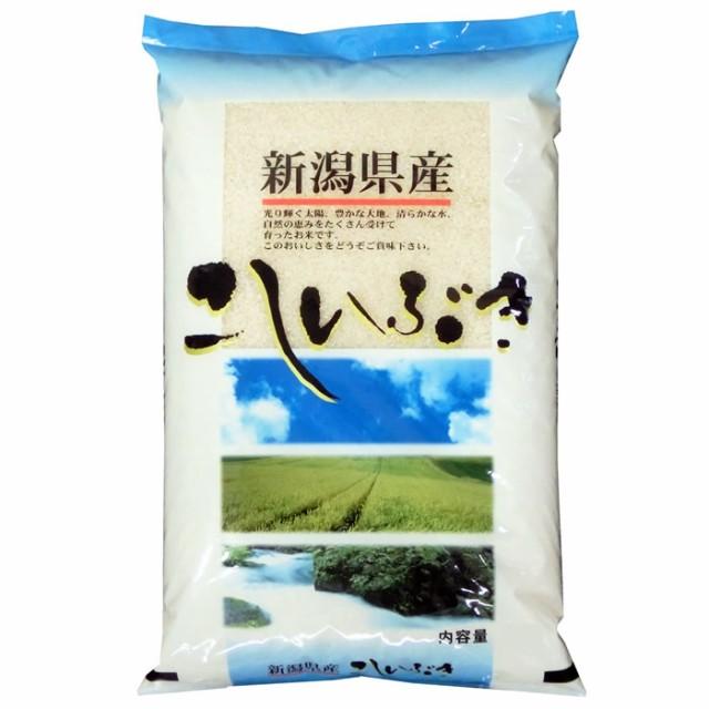 北陸 越後の米 令和元年産新潟県産こしいぶき 白米 10kg (玄米/無洗米 選択可)