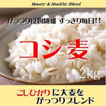 コシヒカリにがっつり大麦をブレンドした「コシ麦」2kg (長期保存包装済み)