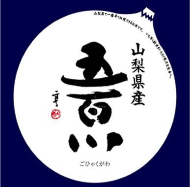 ブランド米 令和元年産 山梨県産 五百川白米 10kgx1袋 (玄米/無洗米 選べます)