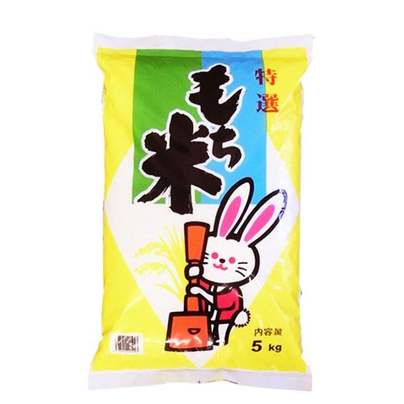 おいしいもち米 令和元年産山形県産ヒメノモチ 玄米5kgx2袋 長期保存包装