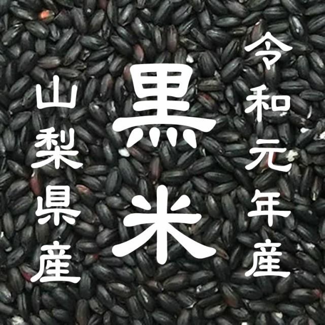 【事業所配送(個人宅不可)】 令和元年産 山梨県産 黒米 国産 10kg