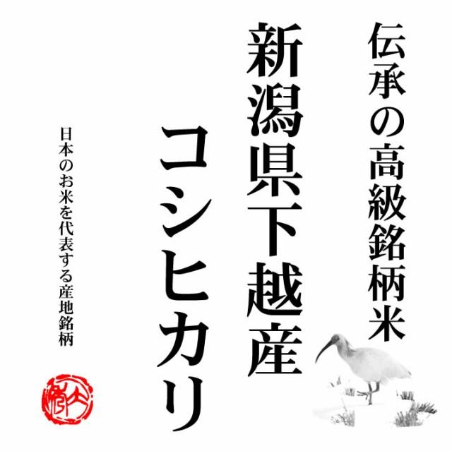 新米 越後の米 令和2年産 新潟県下越産 コシヒカリ 10kg 白米 (玄米/無洗米 選べます。)新米 コシヒカリ 新米 10kg