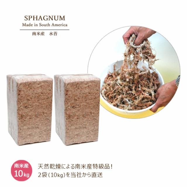 業務用 水苔 南米産 10kg(5kg×2袋) 大量発注可能