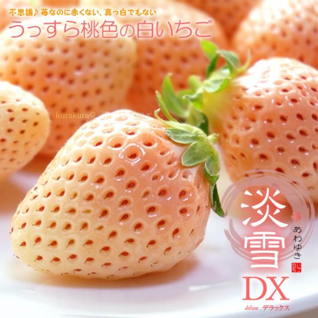 白いちご 淡雪(約200g×2)熊本産 いちご 白いちご ギフト 白イチゴ イチゴ 苺 贈答 化粧箱 あわゆき 淡雪いちご フルーツ 果物 送料無料