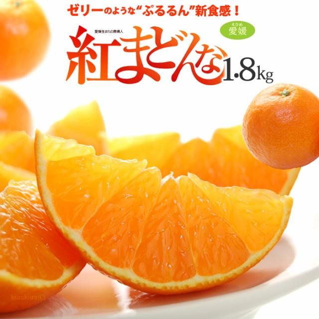 紅まどんな 3L(約1.5kg)愛媛産 秀品 贈答用 みかん ミカン 蜜柑 食品 フルーツ 果物 みかん 送料無料 お歳暮 御歳暮 ギフト