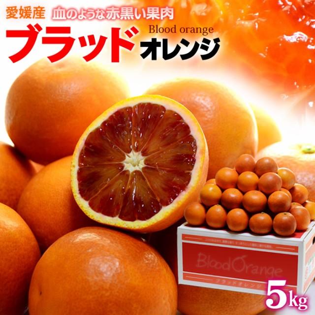 ブラッドオレンジ(L-2L/約5kg)愛媛産 秀品 タロッコ フルーツ 果物 ブラッドオレンジ タロッコオレンジ 国産 送料無料