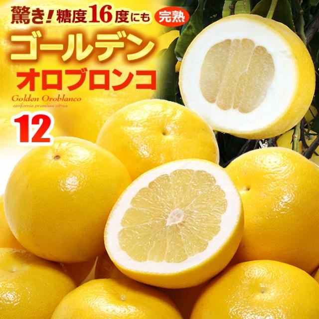 ゴールデンオロブロンコ(10-14玉/約3.8kg)カリフォルニア産 食品 フルーツ 果物 グレープフルーツ 高糖度 送料無料