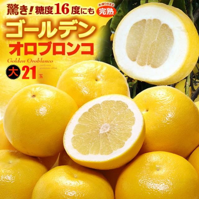 ゴールデンオロブロンコ 大(21玉/約9.2kg)カリフォルニア産 食品 フルーツ 果物 グレープフルーツ 高糖度 大玉 甘い 送料無料