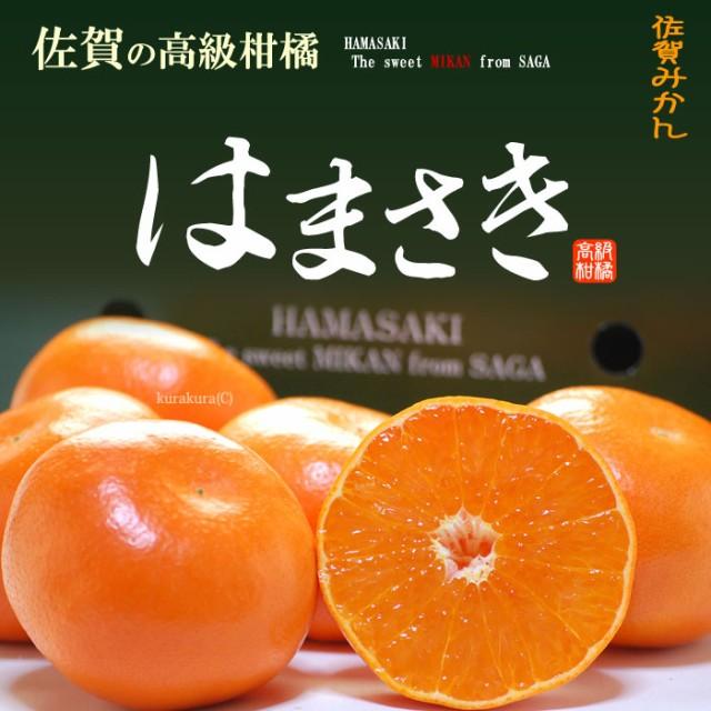 はまさきみかん(約2.5kg)佐賀産 秀品 贈答用 みかん はまさき ギフト 麗紅 柑橘 食品 フルーツ 果物 みかん 送料無料