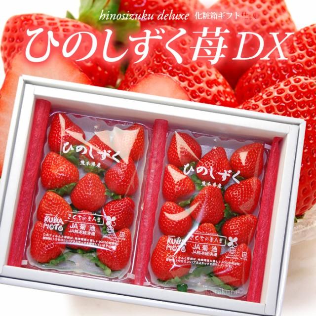 ひのしずくDX(約300g×2P)熊本産 贈答用 ギフト いちご 苺 イチゴ デラックス 食品 フルーツ 果物 いちご 送料無料