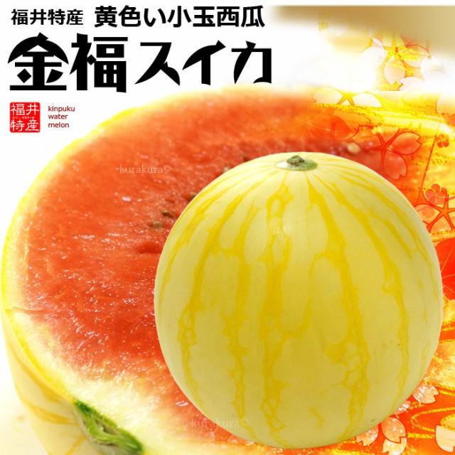 金福スイカ(約2kg-2.5kg×1玉)福井産 すいか 西瓜 黄色 送料無料