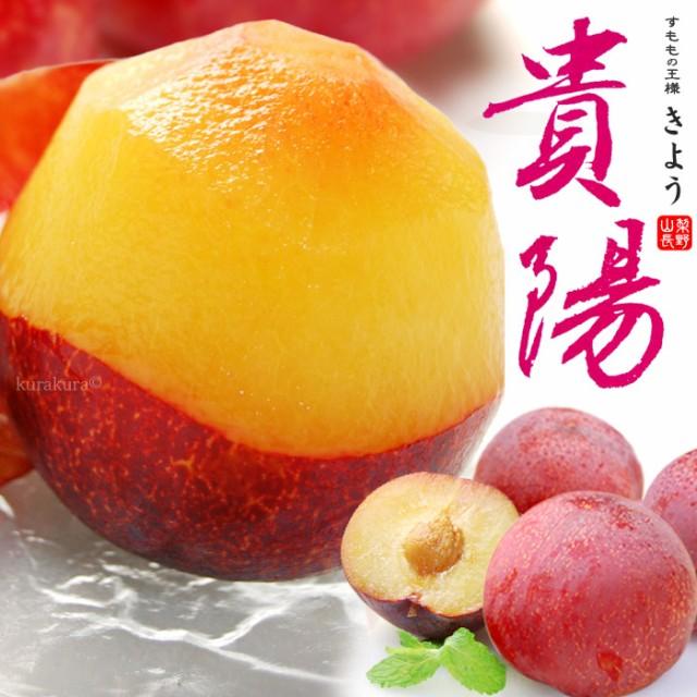 貴陽プラム(8-12玉/約1.8kg)山梨・長野産 秀品 国産すももの最高峰 お中元 ギフト 食品 フルーツ 果物 プラム 送料無料