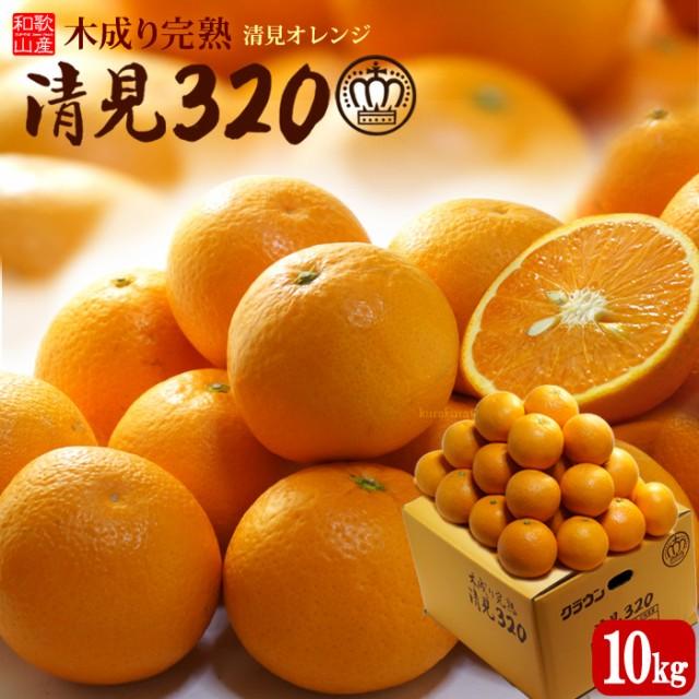 木成り完熟清見オレンジ 清見320(約10kg)和歌山産 清見 タンゴール みかん オレンジ 国産 柑橘 フルーツ 果物 みかん 送料無料