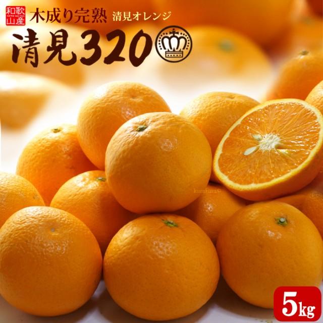 木成り完熟清見オレンジ 清見320(約5kg)和歌山産 清見 タンゴール みかん オレンジ 国産 柑橘 フルーツ 果物 みかん 送料無料