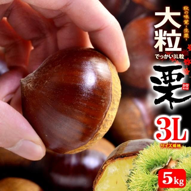 栗3L(約5kg)茨城・熊本・愛媛産 大粒 和栗 くり クリ 食品 フルーツ 果物 栗 送料無料