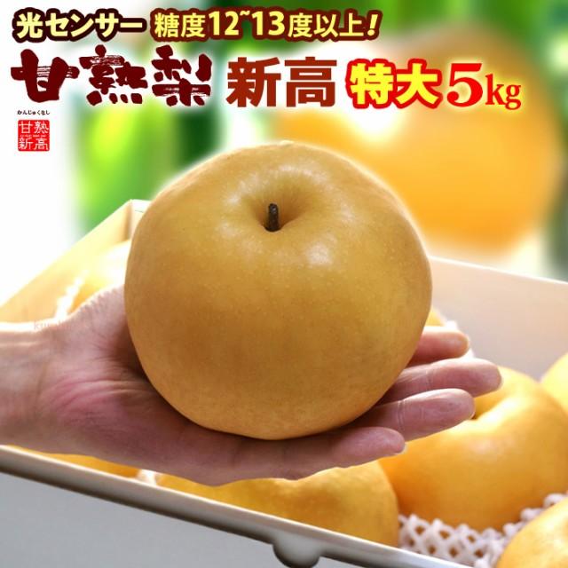 甘熟新高梨6L(約5kg)産地はお任せ 秀品 糖度12度以上の特大新高梨 食品 フルーツ 果物 和梨 新高 送料無料