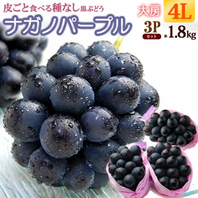 ナガノパープル4L×3房(約1.8kg)長野産 秀品 種無し 皮ごと ぶどう 食品 フルーツ 果物 ブドウ ギフト 送料無料