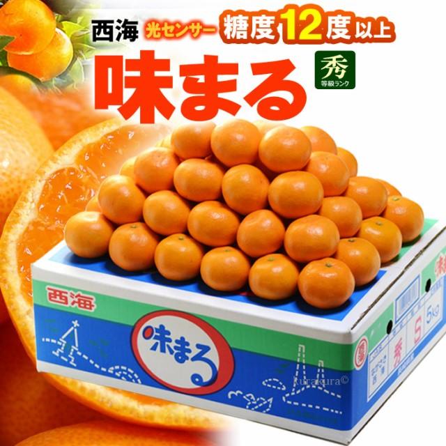 西海みかん 味まるみかん(5kg)長崎産 赤秀 贈答用 糖度12度以上 ミカン 蜜柑 食品 フルーツ 果物 みかん 送料無料