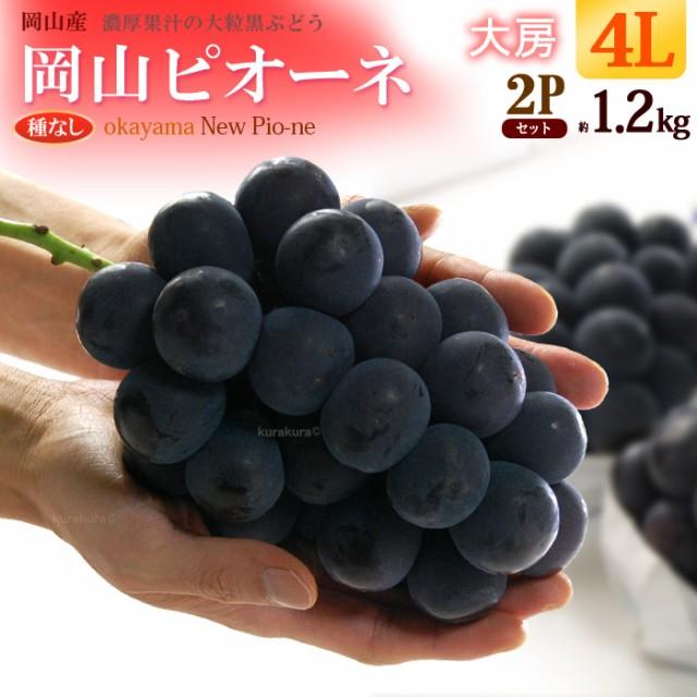 岡山ピオーネ4L×2房(約1.2kg)岡山産 秀品 ぶどう 種無し 食品 フルーツ 果物 ブドウ ギフト 送料無料