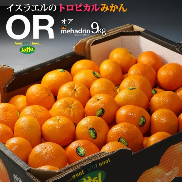 オアオレンジ(約10kg)イスラエル産 ORマンダリン オア オレンジ 食品 フルーツ 果物 みかん オレンジ 高糖度 送料無料