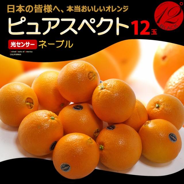 ピュアスペクトブラック ネーブル(12玉/約2.8kg)アメリカ産 糖度12度以上 カリフォルニア オレンジ ネーブル 高糖度 甘い 食品 フルーツ
