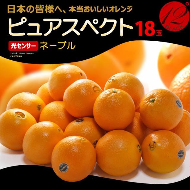 ピュアスペクトブラック ネーブル(18玉/約4.2kg)アメリカ産 糖度12度以上 カリフォルニア オレンジ ネーブル 高糖度 甘い 食品 フルーツ