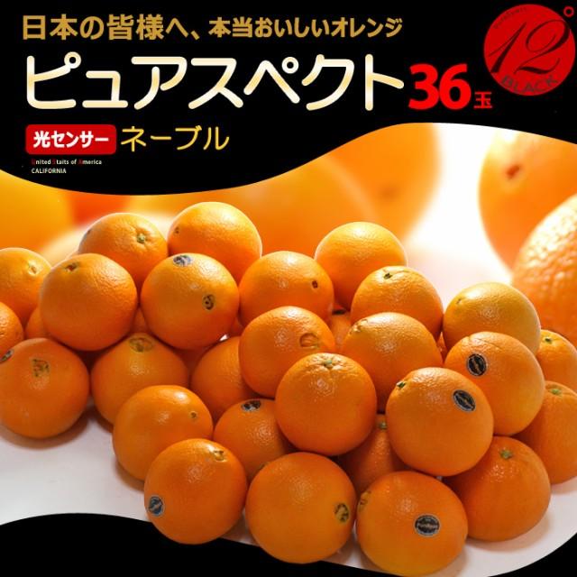 ピュアスペクトブラック ネーブル(36玉/約8.5kg)アメリカ産 糖度12度以上 カリフォルニア オレンジ ネーブル 高糖度 甘い 食品 フルーツ