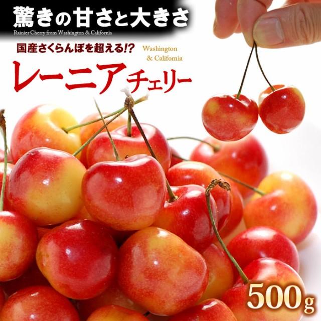 レーニアチェリー(500g)アメリカワシントン州産 レイニア サクランボ 食品 フルーツ 果物 さくらんぼ アメリカンチェリー 送料無料