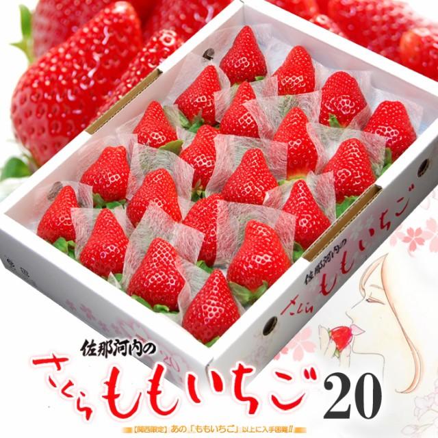 さくらももいちご(20粒/約700g)徳島県佐那河内産 ももいちご 桃 苺 桜 サクラ 贈答用 ギフト 桃苺 イチゴ フルーツ 果物 いちご 送料無料