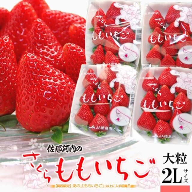 さくらももいちご(220g×4P)徳島県佐那河内産 ももいちご 桜 桃 いちご イチゴ 苺 4パック 食品 フルーツ 果物 いちご 送料無料