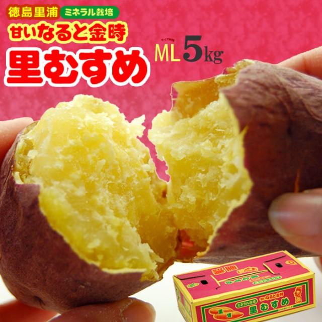 なると金時 里むすめ(M-L/5kg)徳島里浦産 ミネラル栽培 鳴門金時 里娘 さとむすめ ホクホク 焼き芋 焼いも 薩摩芋 さつま芋 食品 野菜 き