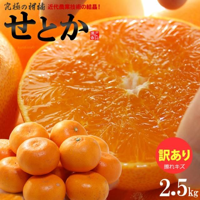 訳ありせとか(約2.5kg)愛媛産 せとか みかん せとか訳あり 柑橘 瀬戸香 食品 フルーツ 果物 みかん せとか 送料無料