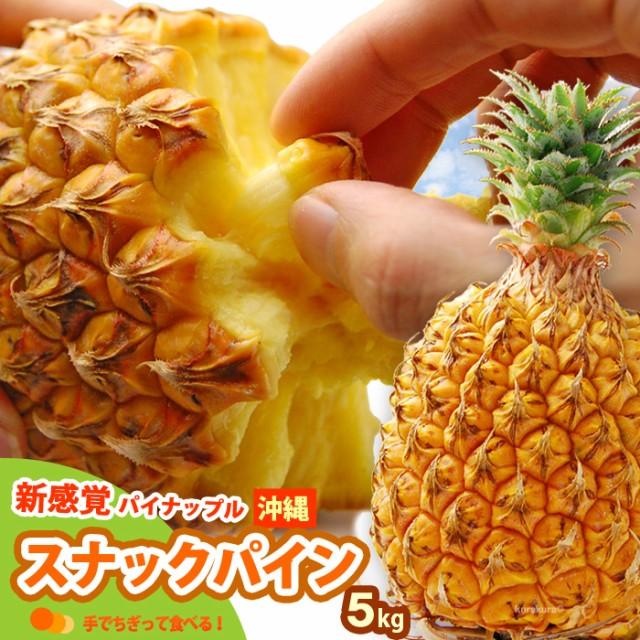 スナックパイン(5kg前後)沖縄産 パイン 食品 フルーツ 果物 パイナップル 送料無料