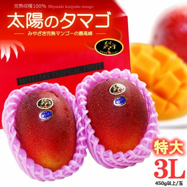 太陽のタマゴ(3L×2玉/約1kg)宮崎産 秀品 ギフト 贈答 国産 完熟 マンゴー 食品 フルーツ 果物 マンゴー 送料無料