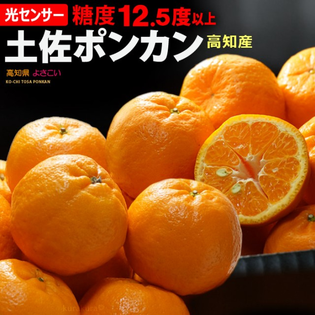 土佐よさこいポンカン 特選(約5kg)高知産 糖度12.5度以上 ぽんかん ポンカン 贈答用 ギフト 柑橘 椪柑 フルーツ 果物 みかん 送料無料