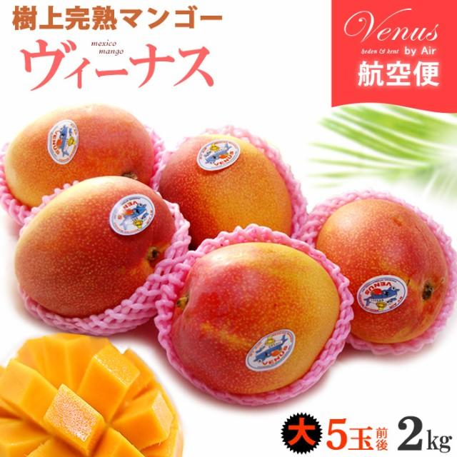 ヴィーナスマンゴー(5玉前後/約2kg)メキシコ産 ギフト 贈答 食品 フルーツ 果物 マンゴー 送料無料