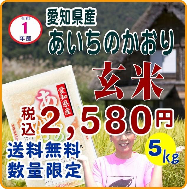 【送料無料】1年産あいちのかおり 玄米5kg(キロ)