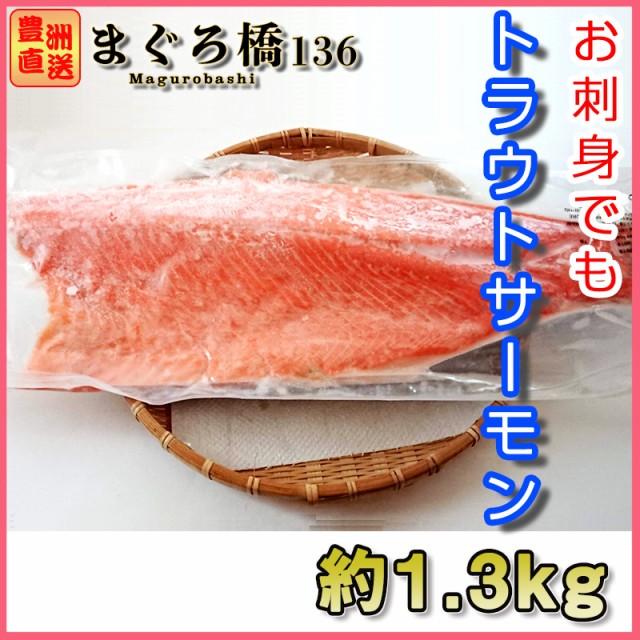 トラウトサーモン 約1.3kg お刺身用 半身 フィレ シャケ 海鮮 グルメ 業務用 おつまみ おかず 鮭 鮮魚