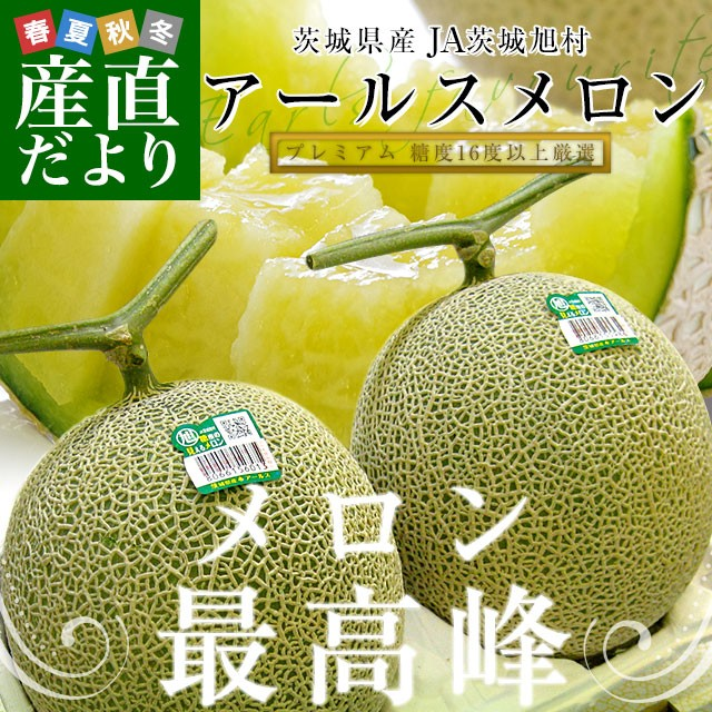 茨城県 JA茨城旭村 プレミアム アールスメロン 糖度16度以上 約3キロ (大2玉) 送料無料 めろん 市場スポット 産直だより