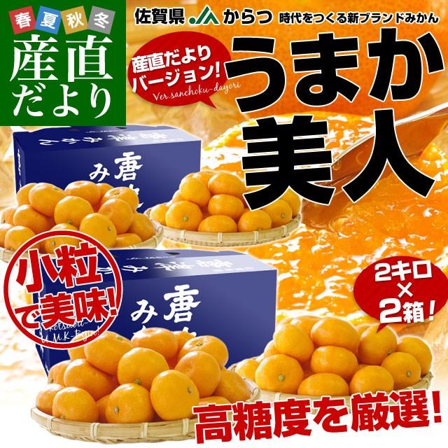 佐賀県より産地直送 JAからつ 小粒うまか美人 高糖度みかん 2Sから3Sサイズ 約2キロ×2箱 U・M・K美人 蜜柑 温州ミカン 産直だより 御