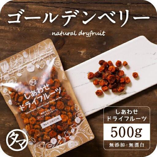 【送料無料】ゴールデンベリー500g(250g×2袋)美容健康のスーパーフードとして世界的に注目!ゴールデンベリーフルーティーな香り