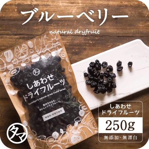 【送料無料】ドライブルーベリー(250g/アメリカ産/無添加)有機JAS認定 オーガニック 爽やかな酸味と豊富なアントシアニンが特徴 ぶるーべ