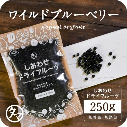 【送料無料】ワイルドブルーベリー(250g/アメリカ産)ポリフェノール豊富な野生種ブルーベリー ドライフルーツ big_dr