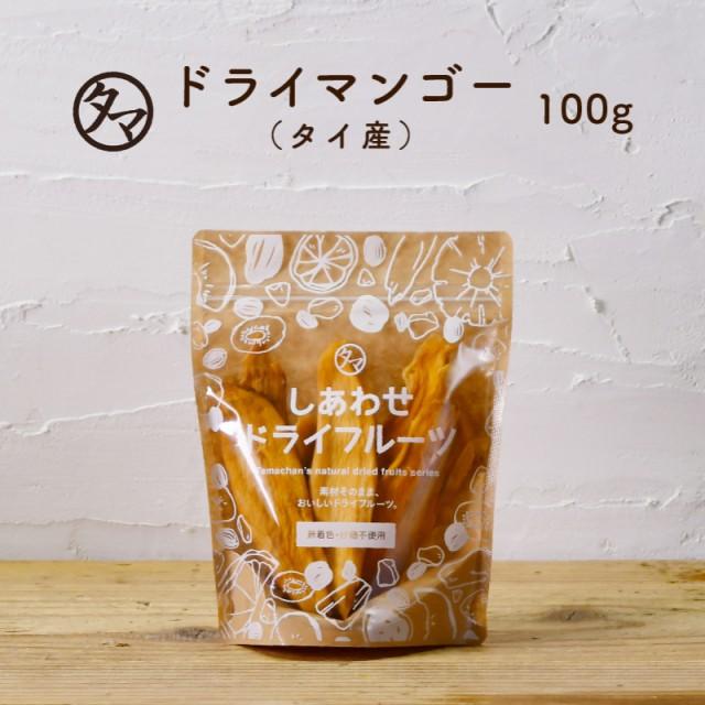2袋以上で送料無料【お試し100g】ドライマンゴー(100g/タイ産/無添加)ドライフルーツ 無添加 砂糖不使用 有機JAS オーガニック認証
