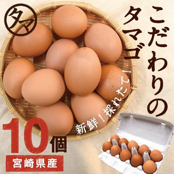 宮崎産 タマゴ 10個 新鮮 生卵 たまご マイナスイオン水 南九州産 お取り寄せ 国産 玉子 九州 品質 衛生管理 卵 安全 高品質