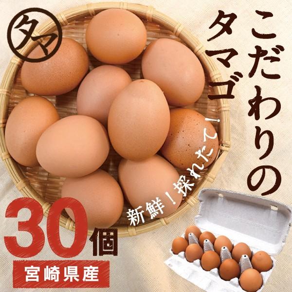 宮崎産 タマゴ 30個 新鮮 生卵 たまご マイナスイオン水 南九州産 お取り寄せ 玉子 九州 卵 衛生管理 安心 安全 高品質 送料無料