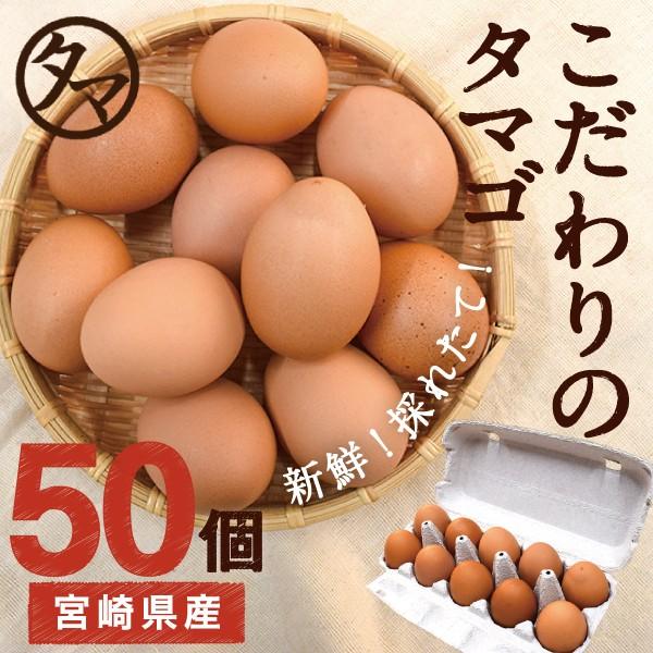 宮崎産 タマゴ 50個 新鮮 生卵 たまご マイナスイオン水 南九州産 お取り寄せ 玉子 九州 品質 衛生管理 卵 安全 高品質 送料無料