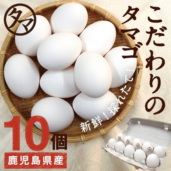 霧島山麓 タマゴ 10個 クール便 送料無料 新鮮 生卵 たまご 南九州産 お取り寄せ 国産 玉子 九州 品質 衛生管理 安心 安全 卵 鹿児島 お