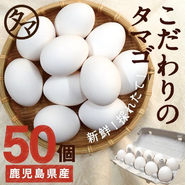 霧島山麓 タマゴ 50個 新鮮 生卵 たまご 南九州産 お取り寄せ 玉子 九州 品質 衛生管理 卵 安全 高品質 鹿児島 送料無料
