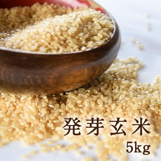 国産玄米の真の実力!発酵発芽玄米5kg 量もたっぷり!